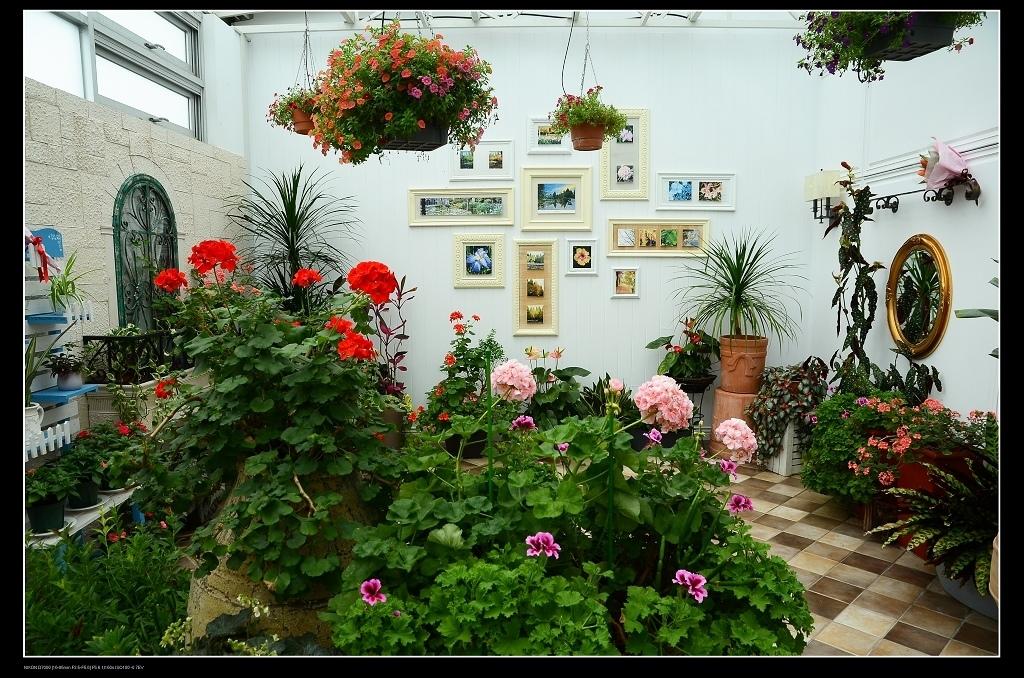 二樓花園.jpg