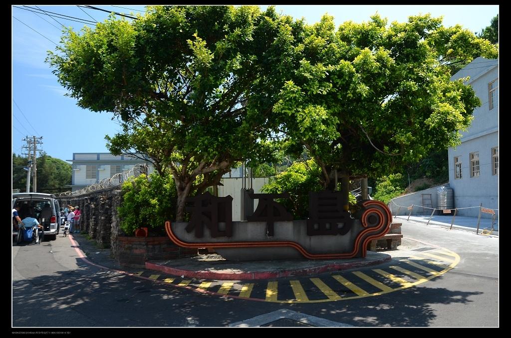和平島樹.jpg