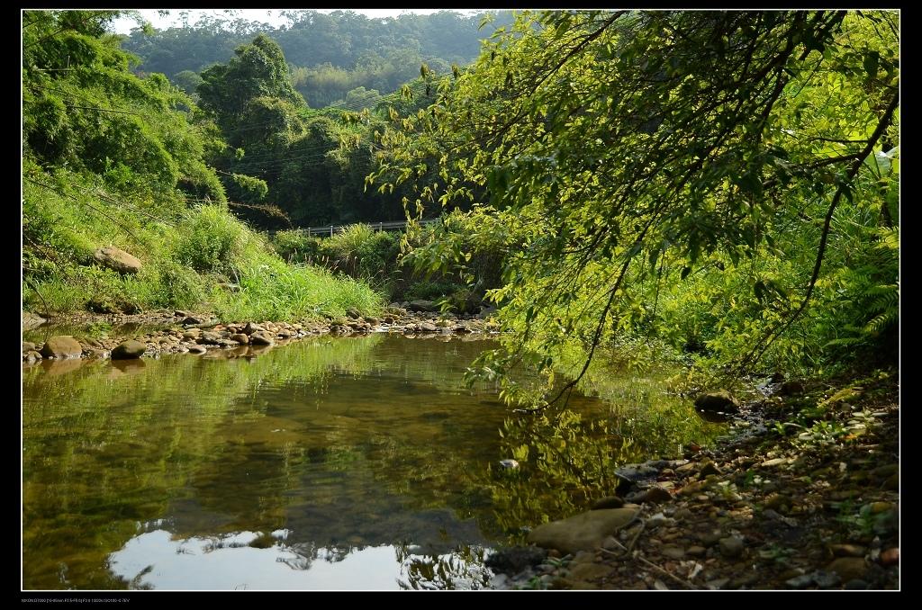 小溪1.jpg