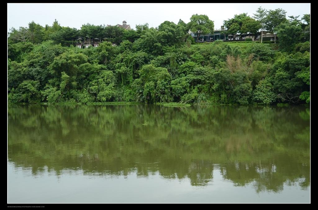 湖中倒影.jpg
