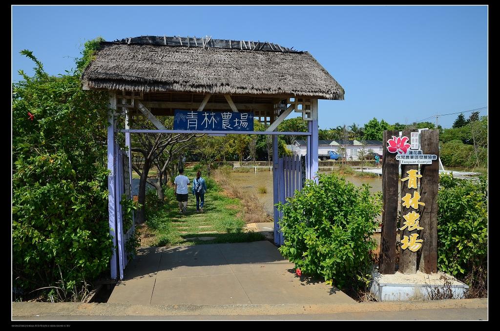 青林農場.jpg