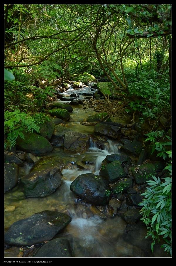 小溪流.jpg