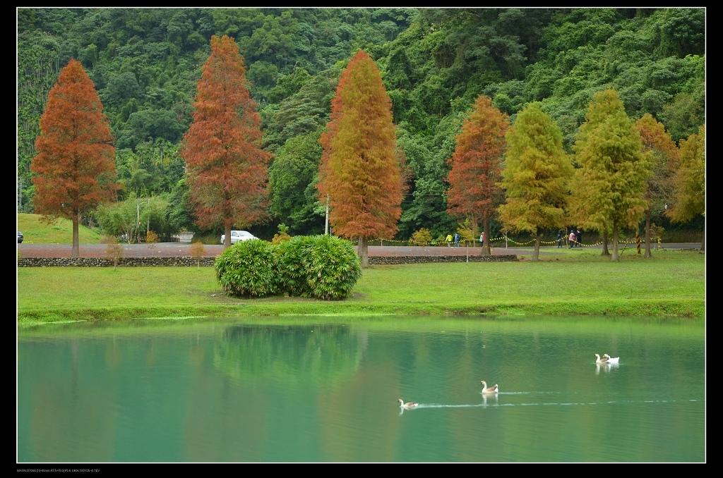 蜊埤湖2.jpg