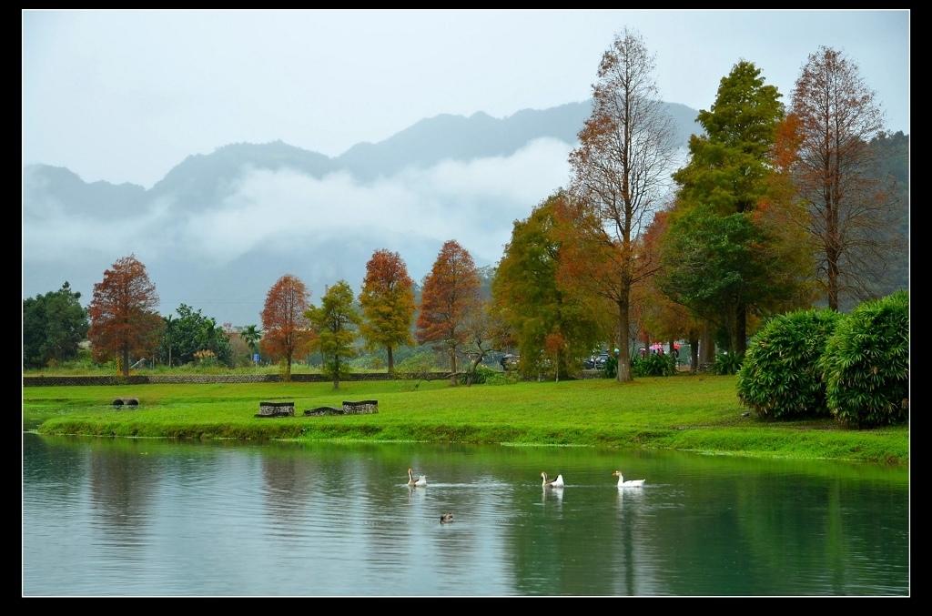 蜊埤湖8.jpg