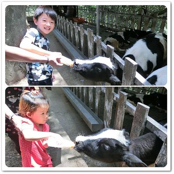 四方鮮乳牧場8