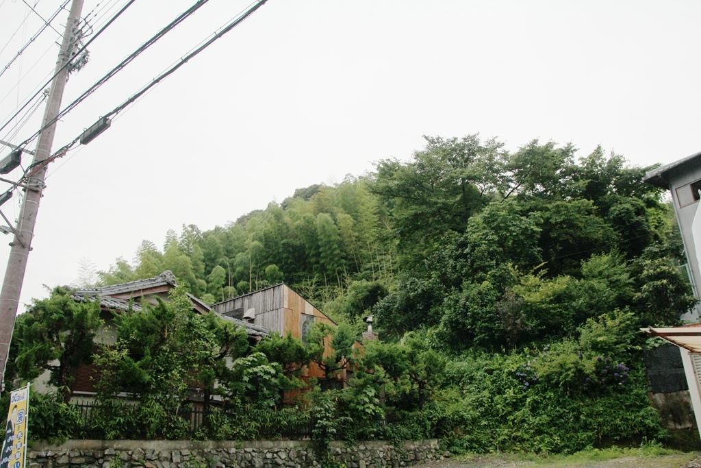 IMG_0524_副本.jpg