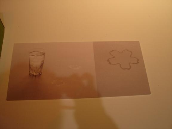 剛剛那日本設計師的櫻花杯
