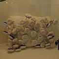 蘑菇?發霉枕頭
