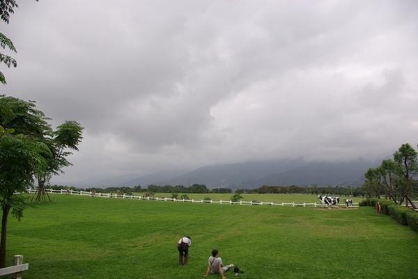 牧場大草原