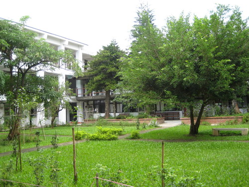 東海大學17-外文糸館の庭