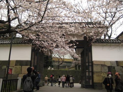 20090331 japan06.JPG