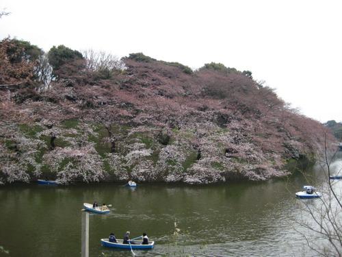 20090331 japan29.JPG