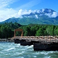 禾木乡木桥.jpg