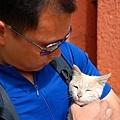 726扎什倫布寺狐狸和貓4.JPG