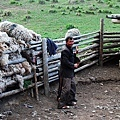 哈薩克牧民