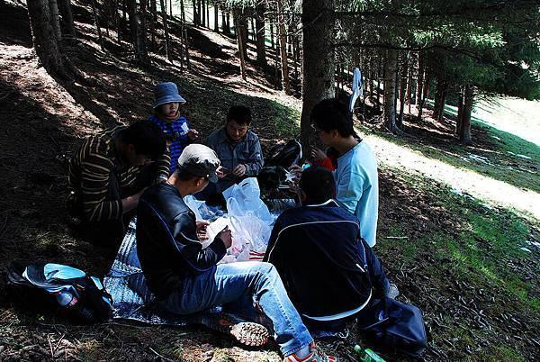 森林午餐時光
