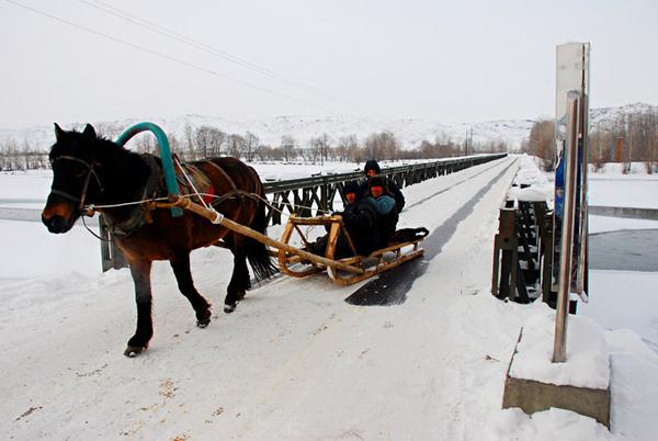 冬季的交通工具马拉爬犁.jpg