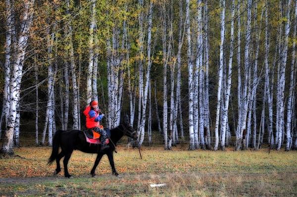 小騎騎.jpg