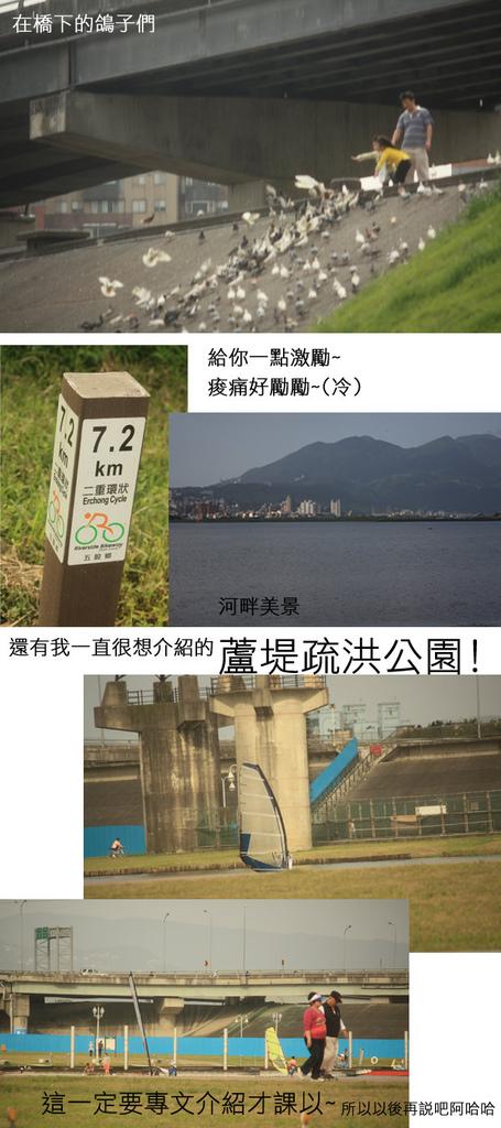 自行車道5.jpg