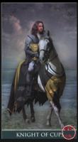聖杯騎士.PNG