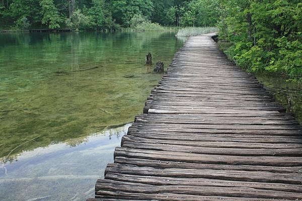 十六湖裡面有很多這樣的木棧道