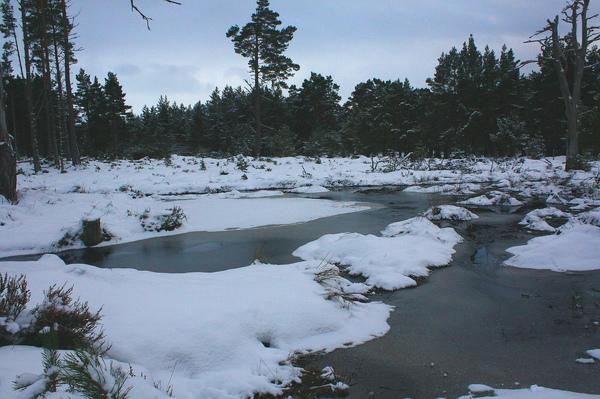 水都要結冰了