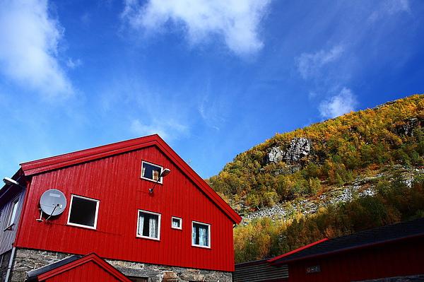 抵達挪威的Myrdal