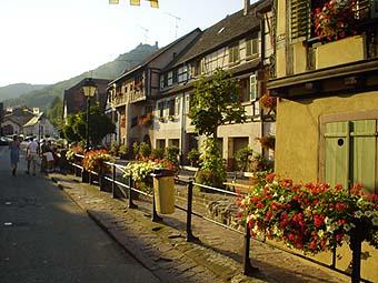 筆直飾滿花卉的街可以直通到後山上的古堡