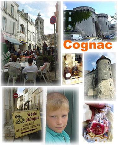 干邑白蘭地的故鄉~Cognac