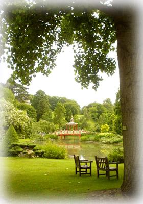 Floral花園裡的 日本亭橋