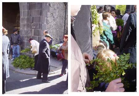 在教堂一旁買賣黃楊木的法國人們
