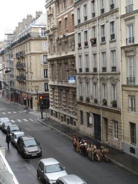 巴黎的一個清晨,窗外有人走過…