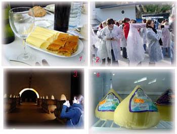 此次的美食產業觀摩~(1)Padron用風味餐 (2)參觀Vigo冷凍漁廠(3)參觀Cambados白酒產地(4)Galicia乳型乳酪