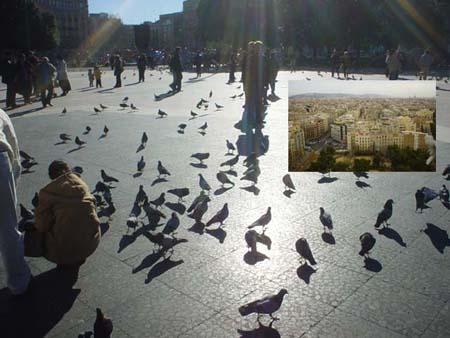 市中心的加泰隆尼亞廣場