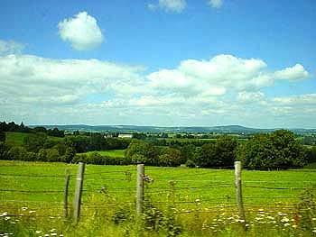 沿途車子經過法國秀麗壯闊的田野