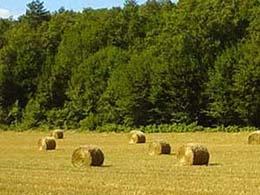 旅途中,麥田上的圓筒狀麥草堆