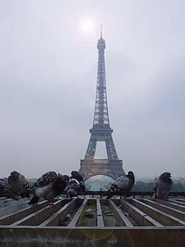 巴黎艾菲爾鐵塔前的回想.........