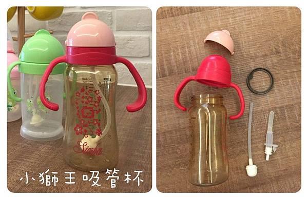 cup_simba-1.jpg