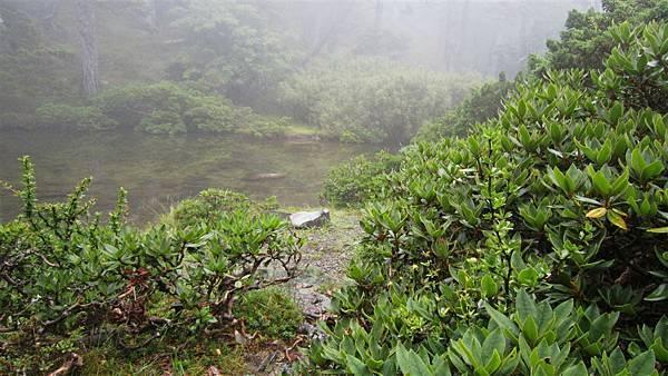 雪山西陵線 074 (2).jpg