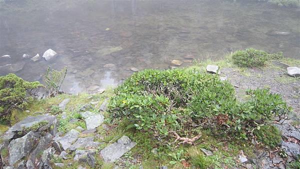 雪山西陵線 075 (2).jpg