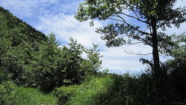 雪山西陵線 204 (2).jpg