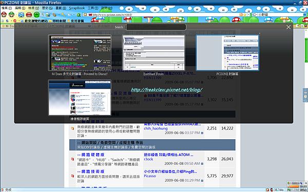 my_FiireFox_v3.0.10.png