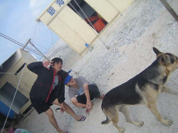 銀海的明星犬-麥克