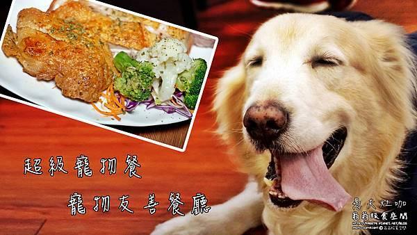 【美食-三重區】愚夫灶咖寵物友善餐廳//捷運美食//多國創意料理//寵物聚餐//黃金獵犬