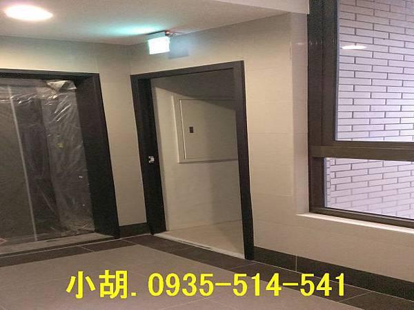 IMAG0254