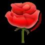 rose_1f339