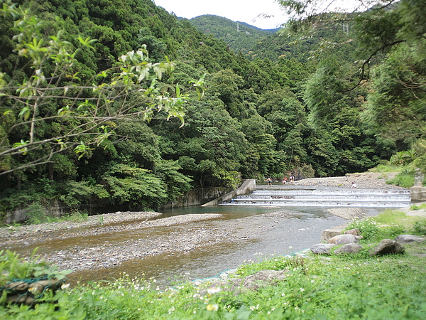 20090926-0006.JPG