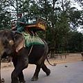 117可以坐的大象.JPG
