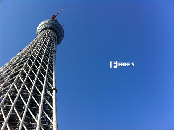 SKY TREES 2011-000.JPG
