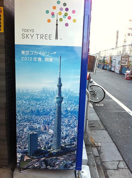 SKY TREES 2011-17.jpg
